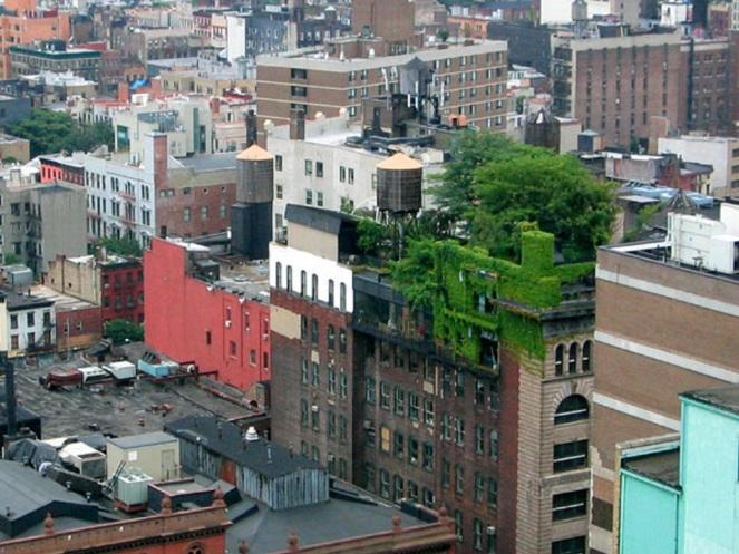Green City Manhattan
