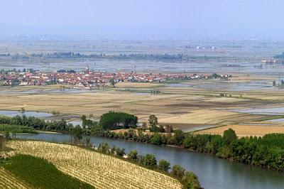 Po River Vercelli