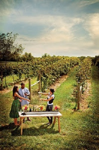 WineTasting in Loudon County