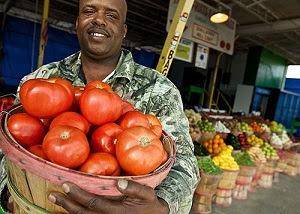Food Farmers