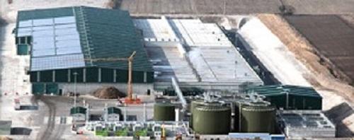 bioman plant