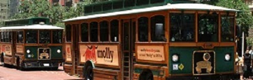 Forth worth trolleys