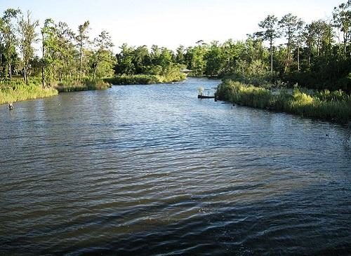 henderson bayou